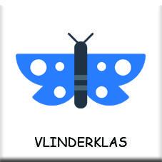 vlinderklas